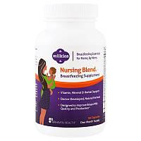 Fairhaven Health, Milkies, Nursing Blend Breastfeeding Supplement, 90 Veggie Caps Milkies, добавка для кормящих мам, 90 растительных капсул