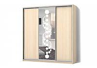 Шкаф-купе ДСП/Зеркало с рисунком пескоструй на 1 двери трехдверный Классик Матролюкс
