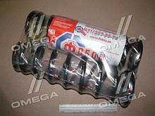 Пружина подвески ВАЗ 2101-07 стандартный шаг передняя (к-т 2 шт.) (про-во Фобос)