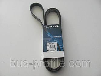 Ремень генератора на Vito 638 2.2 CDI (-AC) — DAYCO —  6PK2080.