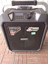 Портативна колонка на акумуляторі SL12-10 з радіомікрофонами / 180W (USB/Bluetooth)