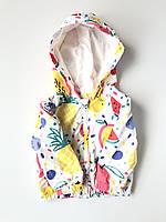 Куртка вітровка для дівчинки, дитяча. Куртка вертовка детская для девочки, фото 1