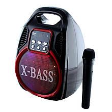 Портативная колонка Golon RX-820 Bluetooth + микрофон + пульт + светомузыка