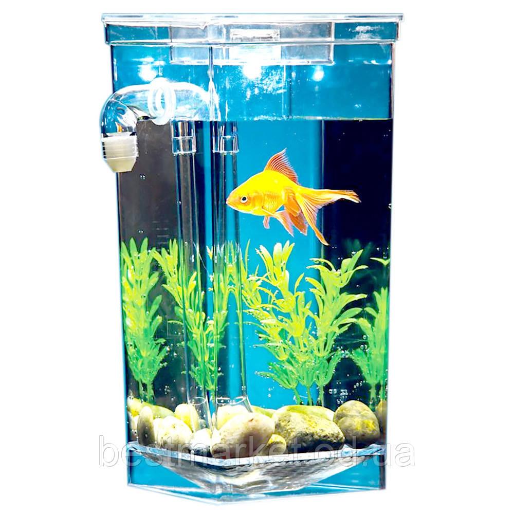 Аквариум Самоочищающийся My Fun Fish Cleaning Tank