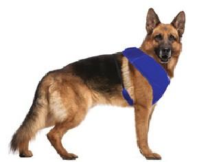 Охлаждающая шлея Harness Fresh, синяя, М, 60-30 см лето