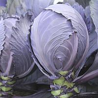 Семена капусты к/к Интеграл F1 20 шт