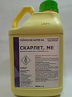 Протравитель СКАРЛЕТ фунгицидный Chemische Guter(Щелково Агрохим) 5л
