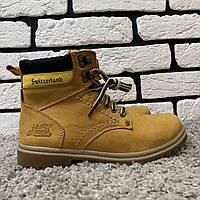 Зимние ботинки (на меху) Switzerland  13029 ⏩ [ 36,37,38 ]