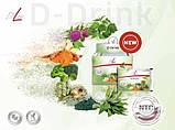 FitLine D-Drink Фитлайн Д Дринк очищение организма детоксикация похудение,Германия, фото 5