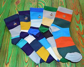 Шкарпетки комплект Ralph Lauren(п'ять кольорів)