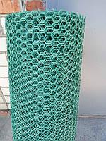 Сетка пластиковая  заборная сота  20*20, 1*30 м