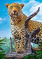 Пазли Trefl 500 ел. арт. 37332 Дикий леопард (48х34см) 40х27х4,5см