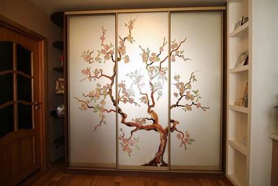 Раздвижные двери для шкафов купе и гардеробных