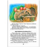 Все добрые люди - одна семья Авт: Василий Сухомлинский Изд: Школа, фото 2