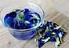 Тайский синий чай Анчан - Фото