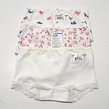Детские трусики-шорты для девочки тм Baykar, рост 98-104, 110-116см., фото 5
