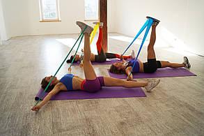 Набор Эластичных лент для фитнеса Way4you Set of 3, фото 3