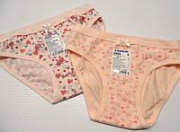 Детские трусики для девочки тм Baykar, рост 134-140(4).