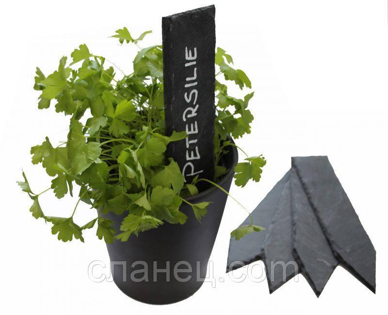 Набір посадочних табличок 5 шт для вазонів, саду, городу 20х5 см, зі сланцю