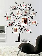 Наклейка на стену фоторамка дерево бабочка