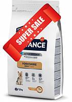 Сухой корм для собак Advance Yorkshire Adult 1,5 кг