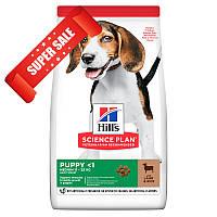 Сухой корм для щенков Hill's Science Plan Canine Puppy Medium Lamb & Rice 2,5 кг