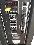 Акумуляторна колонка з мікрофонами Temeisheng SP-1509 / 400W (USB/Bluetooth/Пульт ДУ/Світломузика), фото 3
