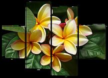 Модульная картина Франжипани 126*93 см(Код: W300M)