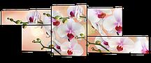 Модульная картина Орхидеи на бежевом 164x61 см Код: W397M
