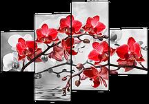 Модульная картина Орхидея красная на сером 114*66 см Код: W247
