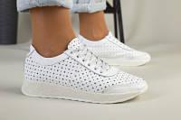 Женские белые кроссовки кожаные с перфорацией, 36