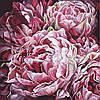 Картина за номерами Півонії Буйство фарб 2 худ. Діана Тучс