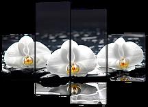 Модульная картина Белые орхидеи на черных камнях 126*93 см Код: W503M