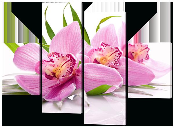 Модульная картина Три орхидеи розовые 126*93 см  Код:W527M