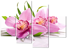 Модульна картина Орхідеї 120*93 см Код: 527.4 120 к.