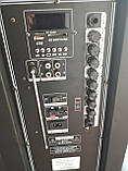 Аккумуляторная колонка профессиональная с микрофонами Temeisheng TMS-1521 / 400W (USB/Bluetooth/Пульт ДУ/ FM), фото 3