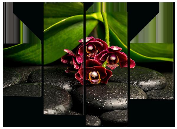 Модульная картина Дикая орхидея на камнях 126*93 см  Код: W498M