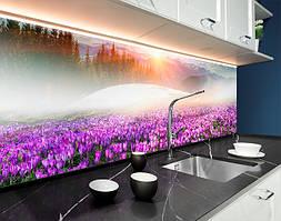 Пластиковый кухонный фартук Поле фиолетовых цветов (ПВХ панель для кухни с фотопечатью, скинали) природа фиолетовый, 620*2050 мм