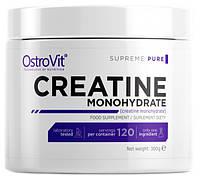 CREATINE Monohydrate Pure OstroVit (300 гр.)