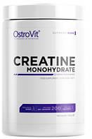 CREATINE Monohydrate Pure OstroVit (500 гр.)