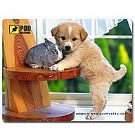 Коврик для мышки Pod Mishkou (Щеночек)