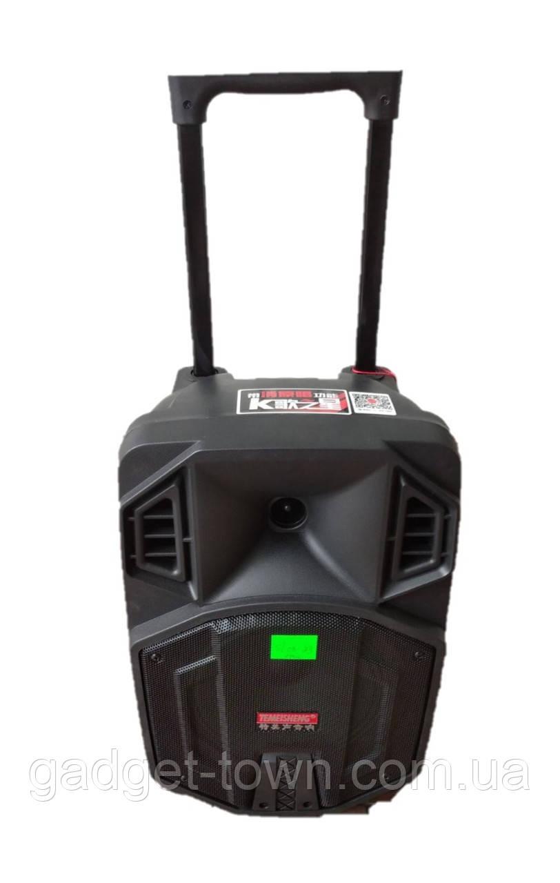 Портативная колонка Temeisheng SL 08-23 с радиомикрофоном / 100W (USB/Bluetooth/Светомузыка)