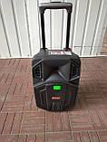 Портативная колонка Temeisheng SL 08-23 с радиомикрофоном / 100W (USB/Bluetooth/Светомузыка), фото 4