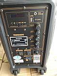 Портативная колонка Temeisheng SL 08-23 с радиомикрофоном / 100W (USB/Bluetooth/Светомузыка), фото 3