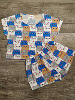 Трикотажная пижама Котята. Хлопковая пижама женская. Размеры S,M,L. Хлопковые пижамы женские. Пижама хлопок.