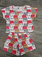 """Трикотажная пижама. """"Киска"""". Хлопковая пижама женская. Размеры S,M,L. Хлопковые пижамы женские. Пижама хлопок."""