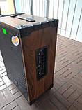 Портативная колонка Temeisheng A 12-42 с радиомикрофонами / 180W (USB/Bluetooth/), фото 5