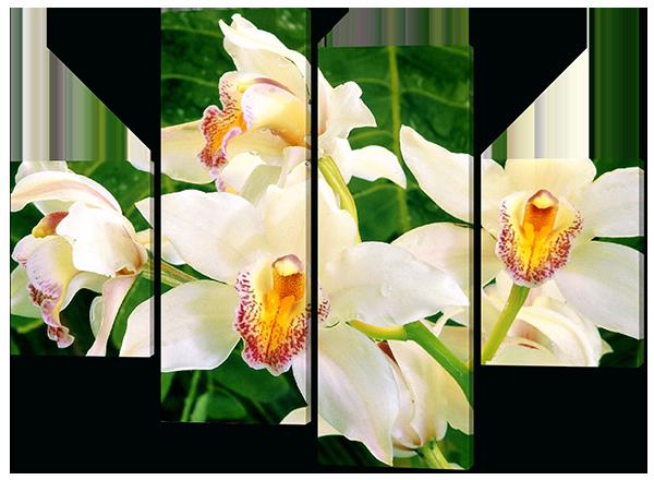 Модульная картина Белая орхидея листья 126*93 см  Код: W461M