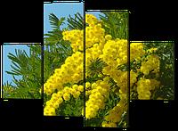 Модульная картина Мимоза 126*93 см  Код: W443M