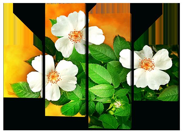 Модульная картина Цветы шиповника 126*93 см Код: W396M